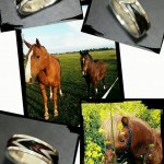 Aureas-Nobilis-Schmuck-mit-Pferdehaar-Schweifhaar-Kundenreferenz-0634233